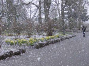 Идват 10 дни ранна зима, температурите рядко ще превишават 8-9 градуса