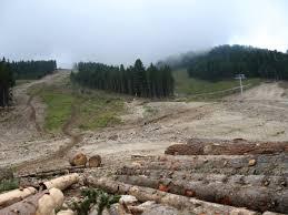 """Парковете на мушка- подготвят компромисен план и за Природен парк """"Витоша"""""""